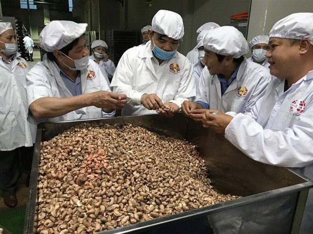 The cashew industry with, because ... the beetle burns