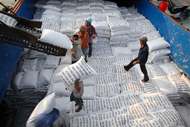 Lúa gạo miền Tây sôi động